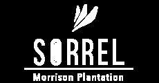 Sorrel Morrison Plantation