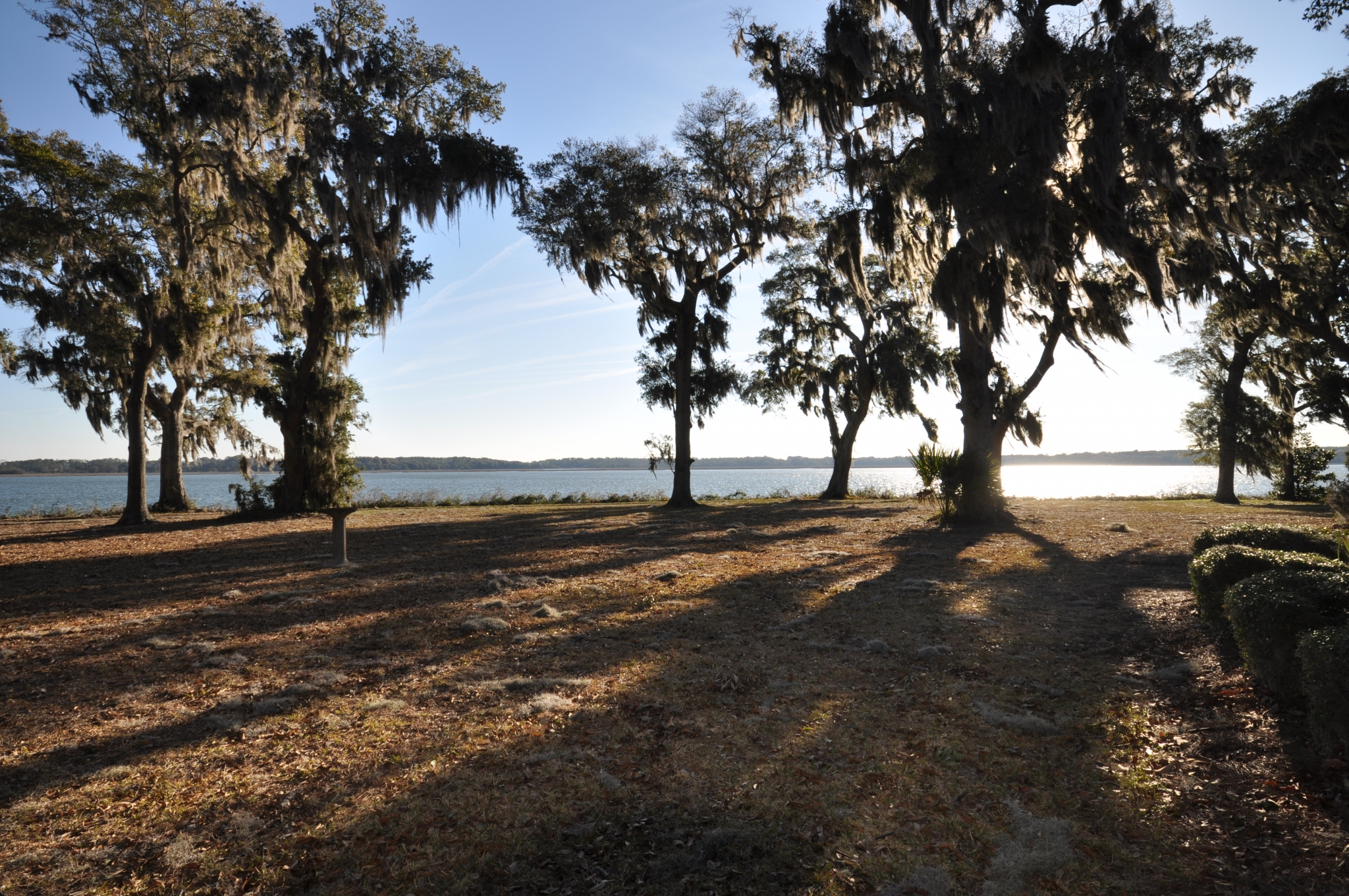 Sunset View of Ocean | Beaufort SC Waterfront View | Trees in Sunshine | Horizon View