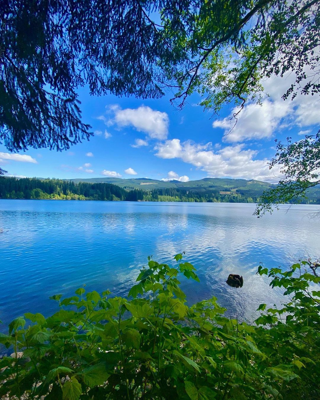 Keeping cool this summer: Lakes and Rivers near Vancouver WA-image
