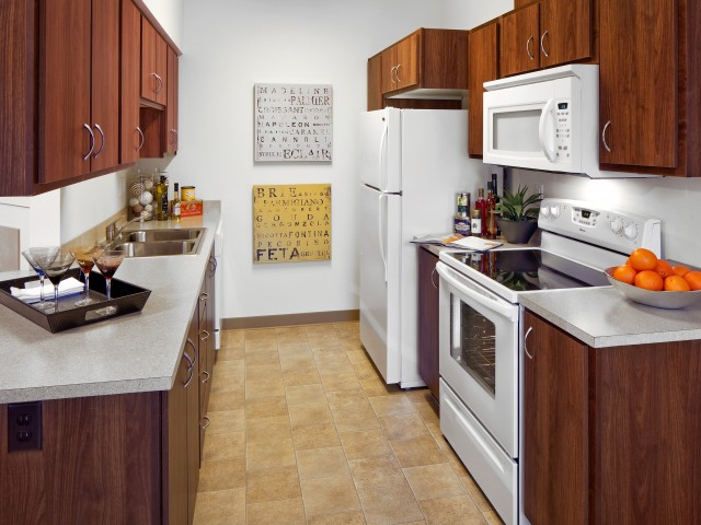 Dishwasher and Refrigerator included