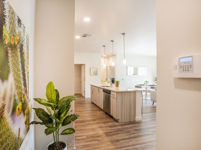 1 bedroom apartment in Goodyear