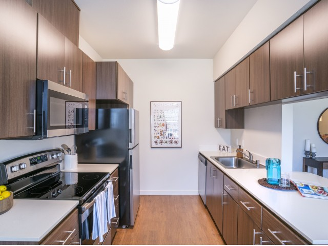 modern apartments for rent