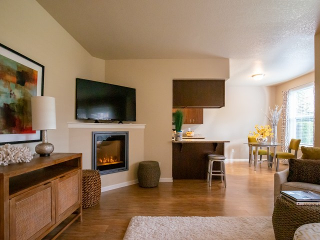 apartment with fireplace amenity