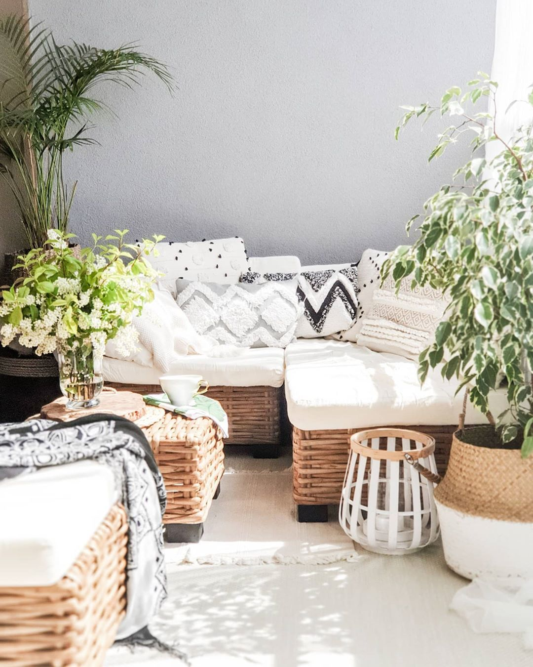 How to Transform Your Patio into A Desert Oasis-image