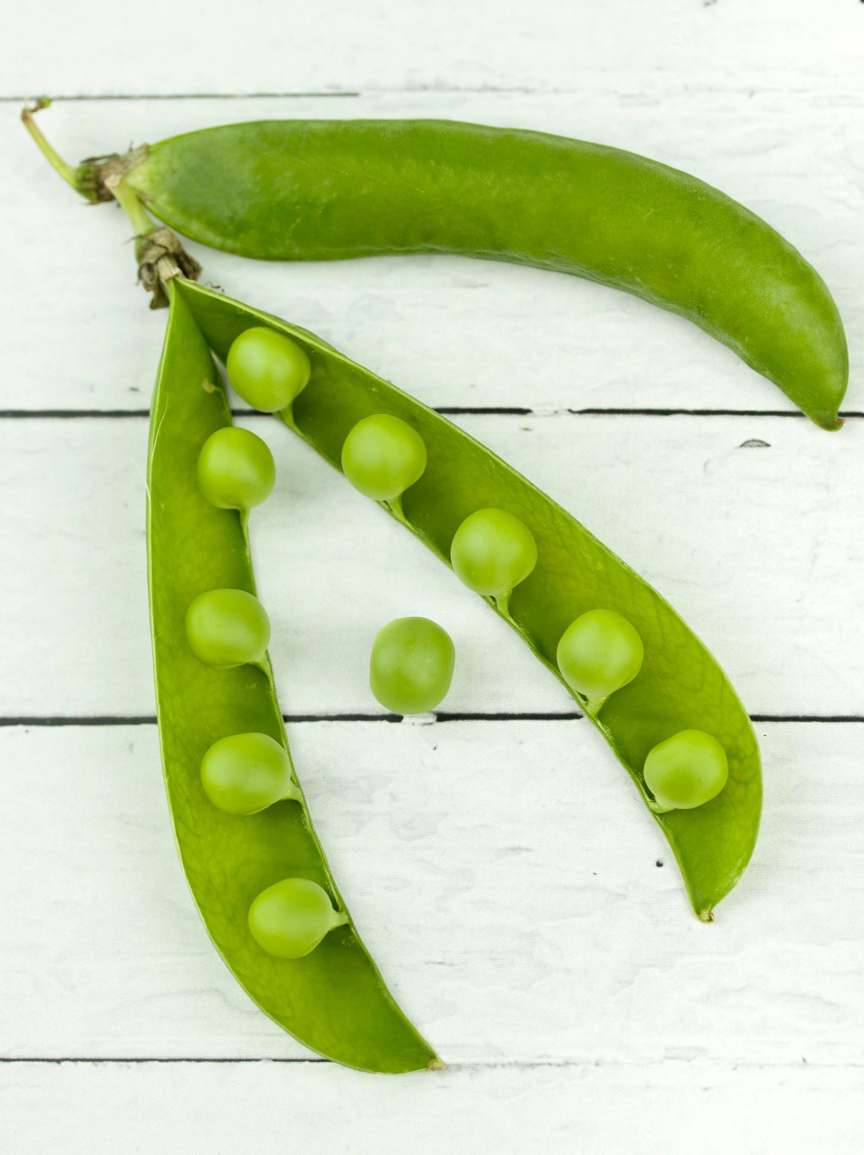 Apartment Gardening: Fall Veggies for Indoor Containers-image