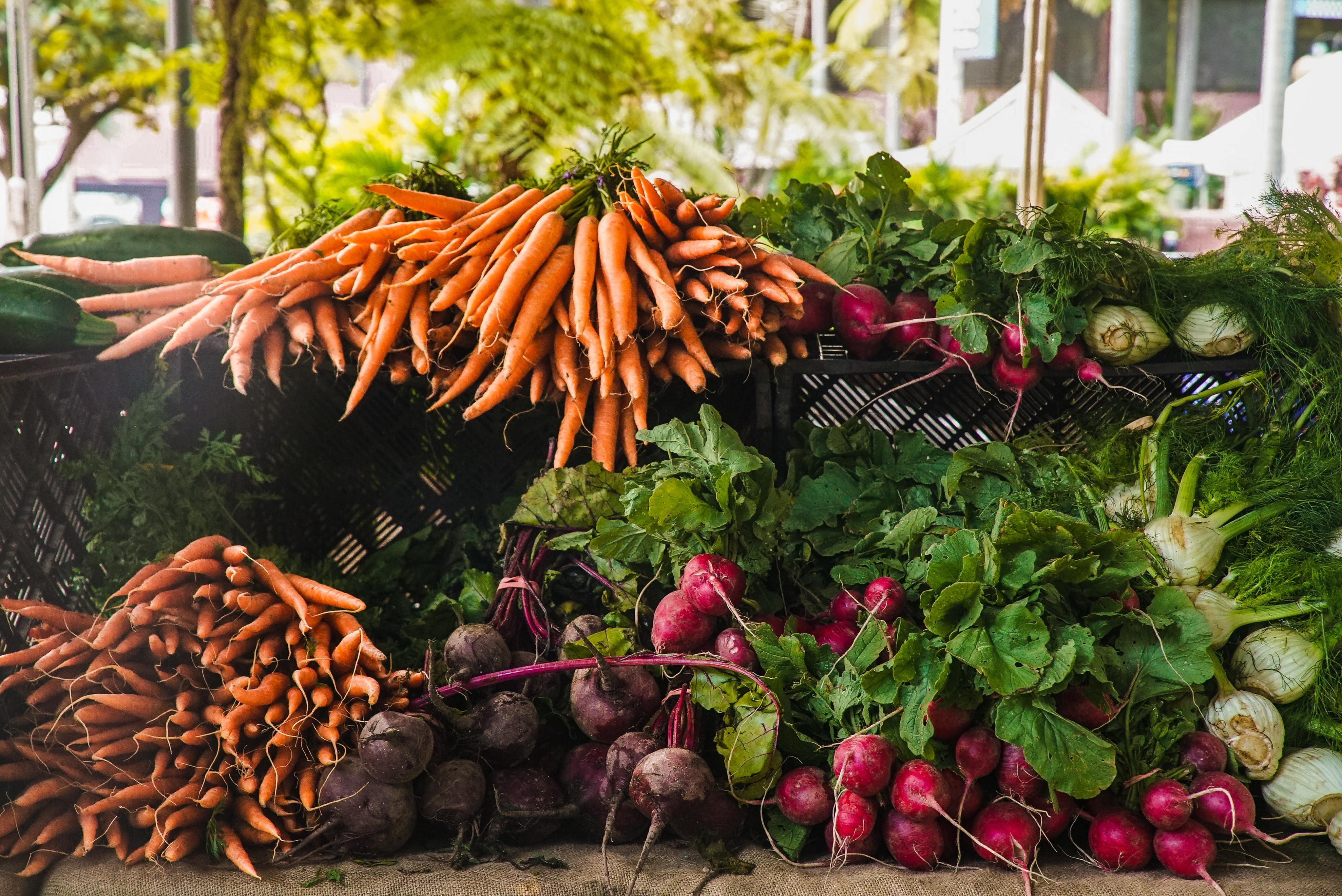 Spring Farmers Markets in Vancouver, WA-image