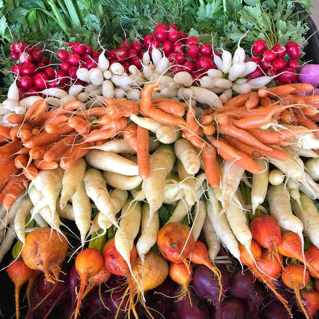 Shop Small, Support Local at the Gilbert Farmers Market-image