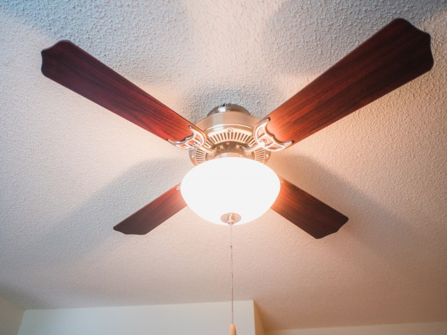 Image of Lighted Ceiling Fans in Every Room for Abbotts Run