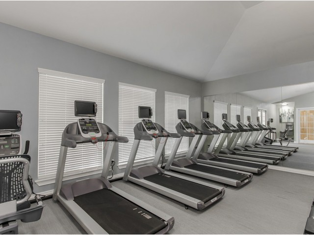 Image of 24/7 Fully-Equipped, High-Tech Fitness  Center with Cardio Theater, Free  Weights & Training Stations for The Mansions on the Park
