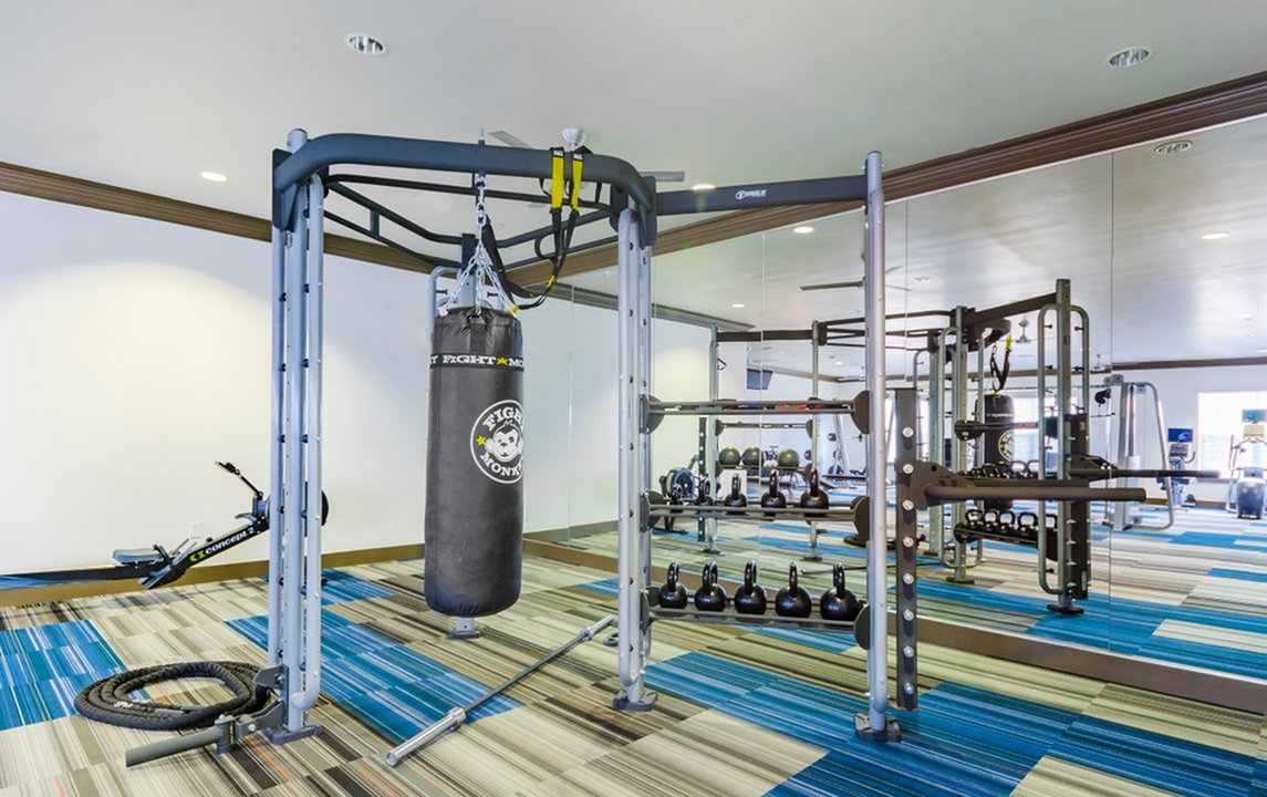 Image of 24/7 Fully-Equipped, High-Tech Fitness  Center with Cardio Theater, Free Weights,  Strength & Crossfit Stations for The Mansions McKinney