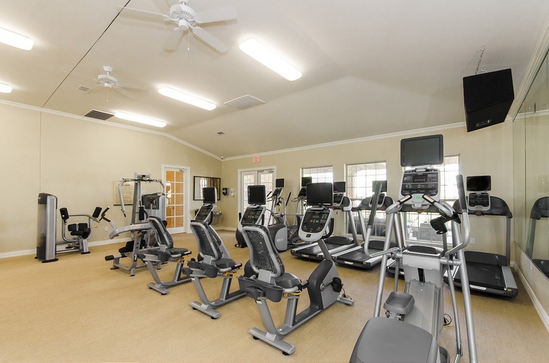 Image of 24-Hour High-Tech Fitness Center with Cardio Theater for The Mansions at Briggs Ranch