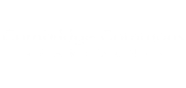 Cambridge Commons