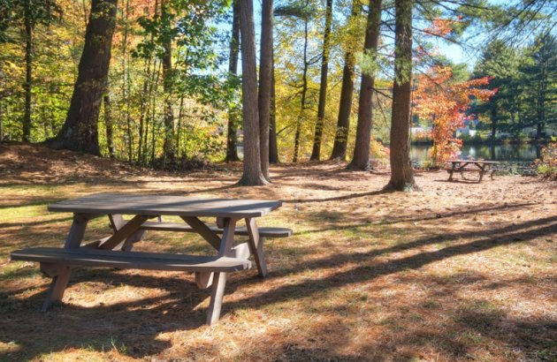With elegant landscaping, residents can spend their time outside enjoying beautiful Keene, NH.
