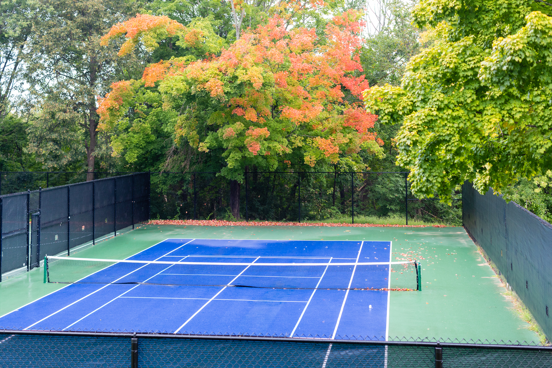 Community Basketball Court | Apartments For Rent In Haverhill Ma | Princeton Bradford Apartments