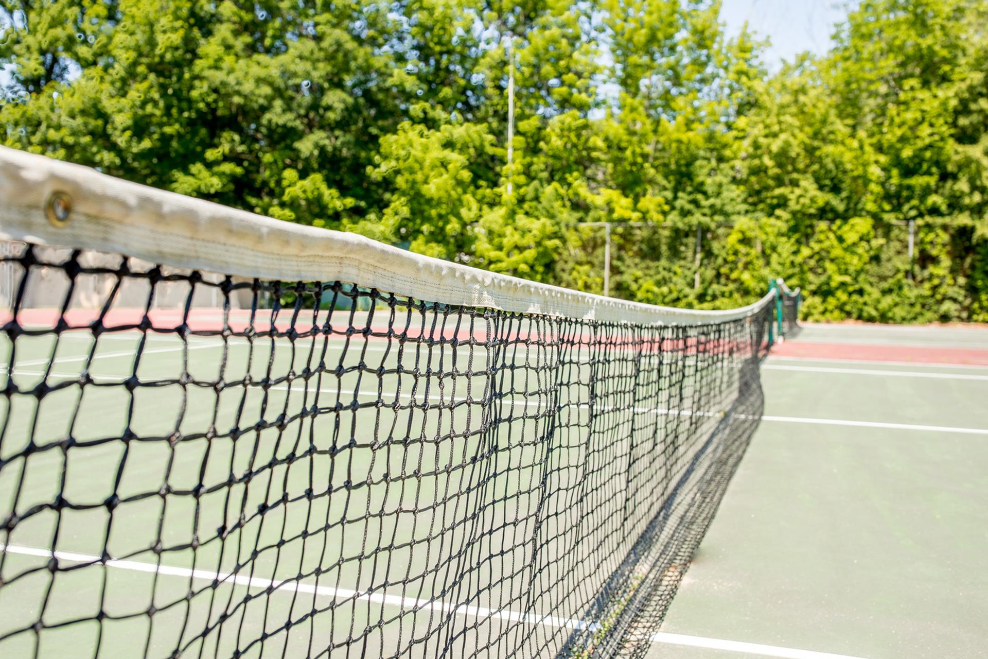 Princeton Pines boasts a convenient tennis court