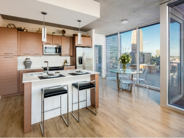 Image of Gourmet, Chef-Inspired Kitchen for One Light Luxury Apartments