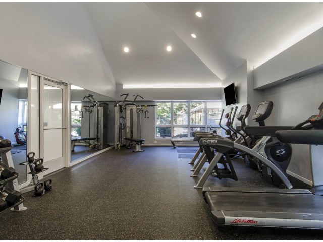 Image of Modern fitness center with cardio and strength equipment for Andover Place Apartment Homes