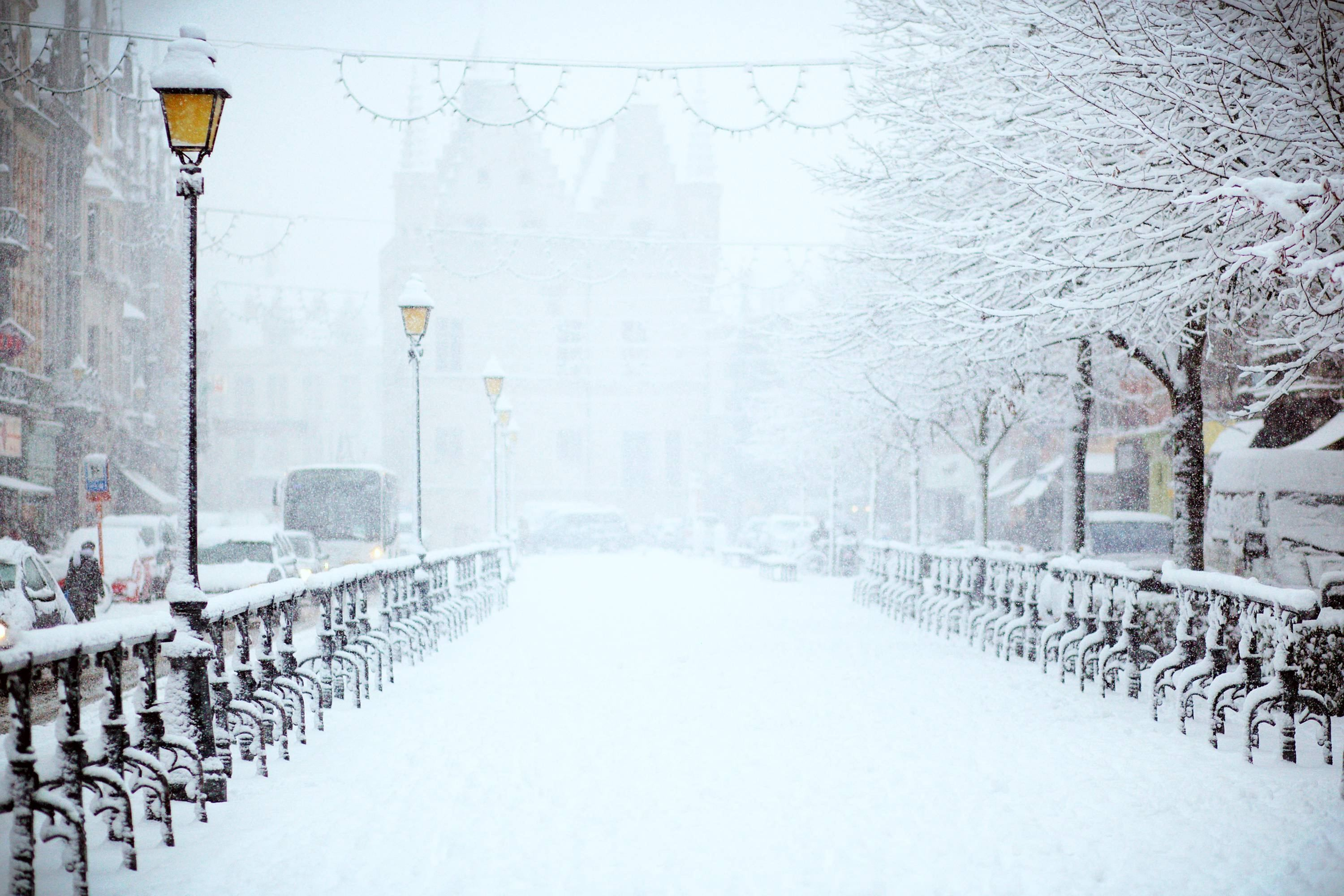 Tips for Embracing the Snow Day-image