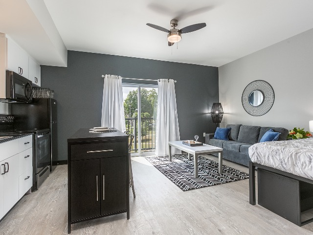furnished studio apartment with gray couch, bed and dining table