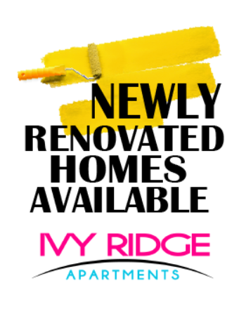 NEWLY RENOVATED IN 2020! Our newly renovated homes include brand new cabinetry, tile-backsplash, granite countertops, new appliances, new plank wood flooring, smart locks, smart thermostats, USB outlets, new sinks, new faucets, new lighting and more! Come tour your new home today!