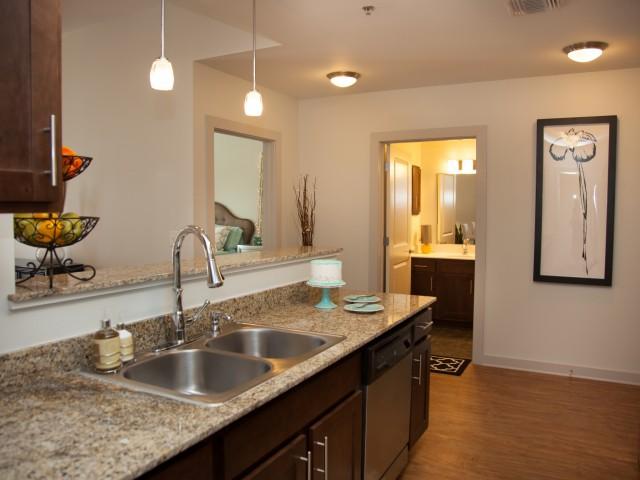 Abundant Granite Countertop Space. Rent Apartment New Orleans
