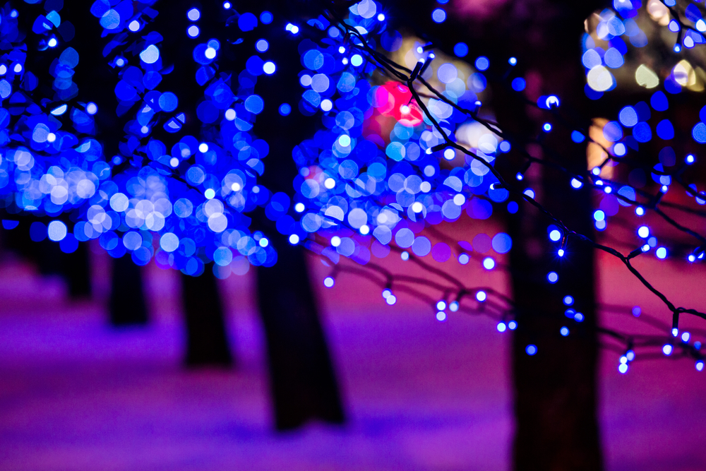 Holiday Events in Columbia-image
