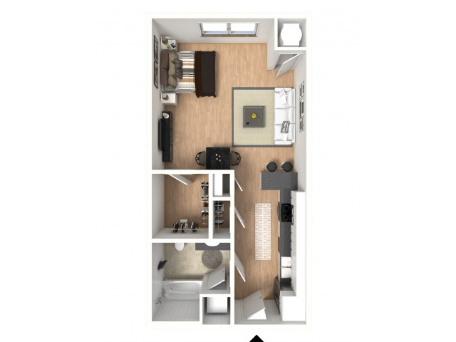 Studio with great closet space