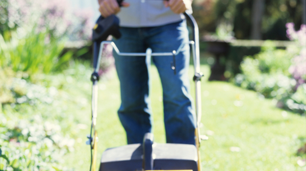 Lawn Care in Your Managed Community Home-image