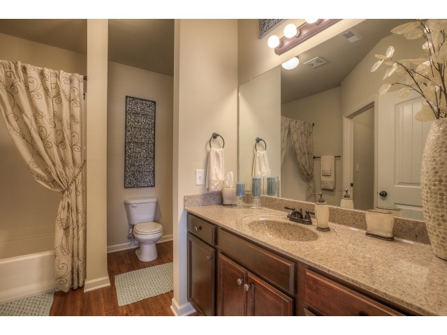 Image of Luxury Bathrooms with Soaker Tubs for Addison at Rossview