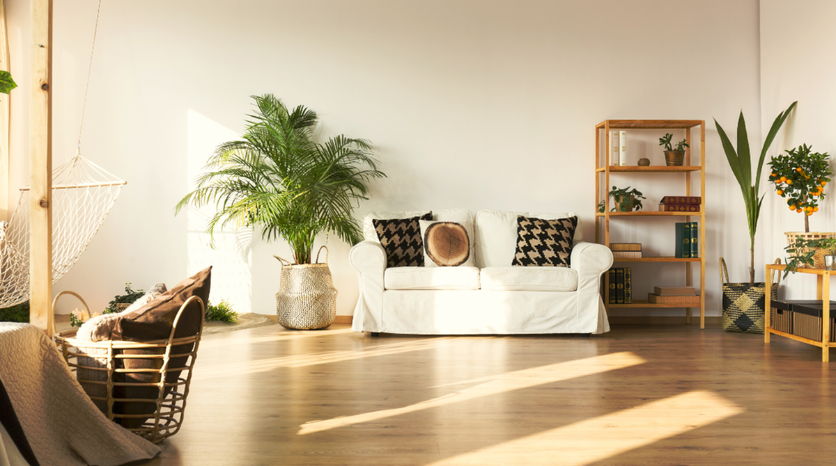7 Reasons Renting Could be the Better Housing Option-image
