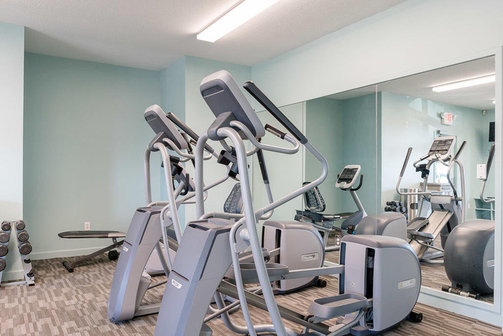 View of Fitness Center, Showing Cardio Equipment, Free-Weights, Weight Bench and Mirrors at Clearview Apartments