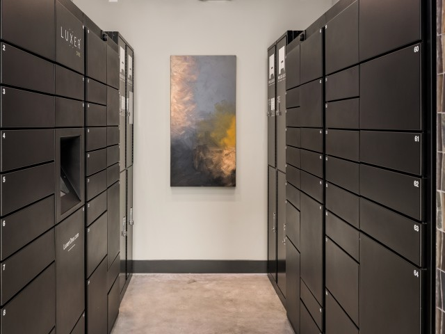 View of Lockers, Showing Luxer One Package Lockers at 935M Apartments