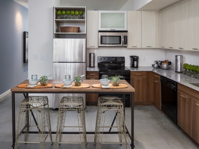 energy efficient stainless steel appliances in West Midtown apartment