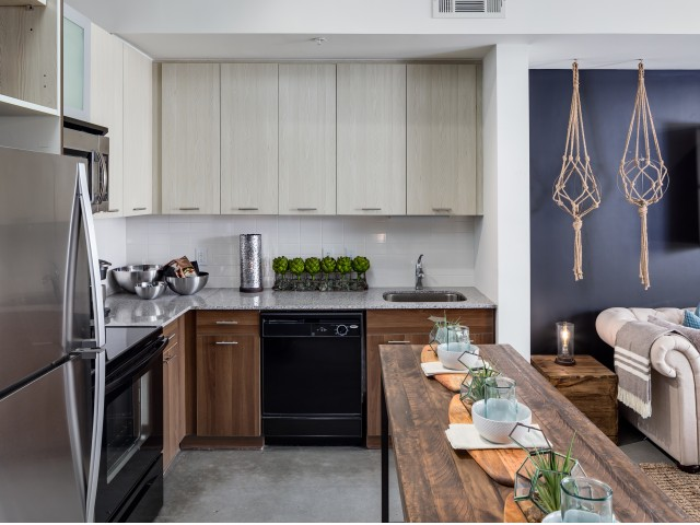 Gourmet kitchen in West Midtown apartment