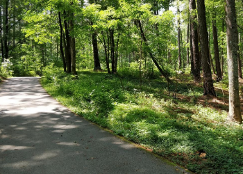 The American Tobacco Trail is a great place to grab a bike and enjoy nature or go for a stroll. The path is yours with over 20 miles of fully paved trails to explore. With beautiful shaded areas along the way, you are sure to stop and appreciate the moment. at American Tobacco Trail