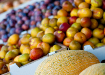 Perkins Orchard is Durham's largest fruit stand and is known for their amazing selection of fresh and local produce. With a $20 bag fill-up and just minutes away you will love stocking up on fruits and veggies! at Perkins Orchard