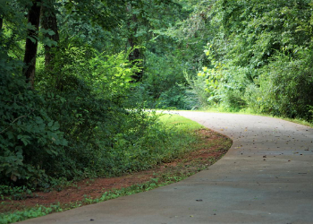 Just a few minutes away from our community you will find a 22-mile paved biking and hiking trail. This beautiful trail is a quick escape where you can get your heart pumping and enjoy the outdoors! Grab your furry friend and head out for the perfect walk or take your bike out for a spin and enjoy the Swamp Rabbit Trail! at Swamp Rabbit Trail