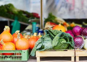 Located less than 2 miles from our property, the Charlotte Regional Farmers market is the perfect stop to shop for locally grown fruits and vegetables, fresh meats and cheeses, and hand-picked flowers. at Charlotte Regional Farmers Market