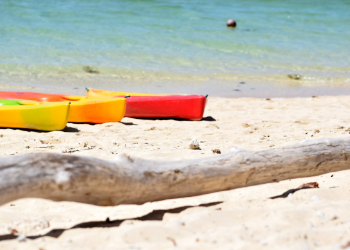 Explore the largest park in Pinellas County made up of interconnected islands that hold mangroves, wetlands, palm hammocks and native plants. Enjoy a day full of kayacking, paddleboarding, or fishing! at Fort De Soto Park