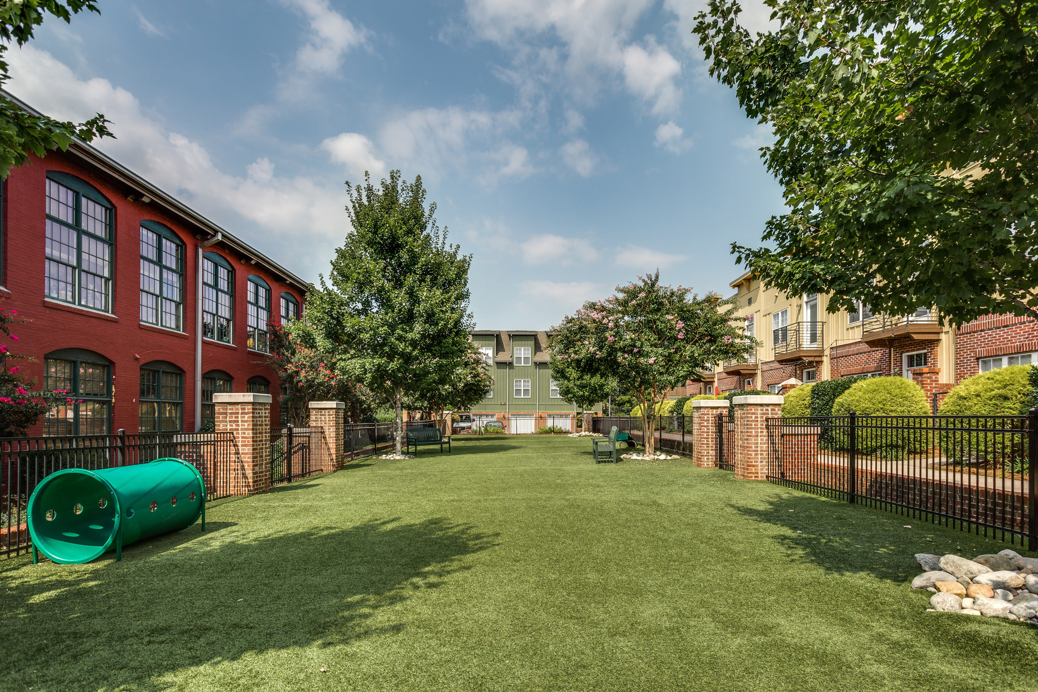 View of Dog Park, Showing Grass, Agility Course, and Fenced-In Area at Alpha Mill Apartments