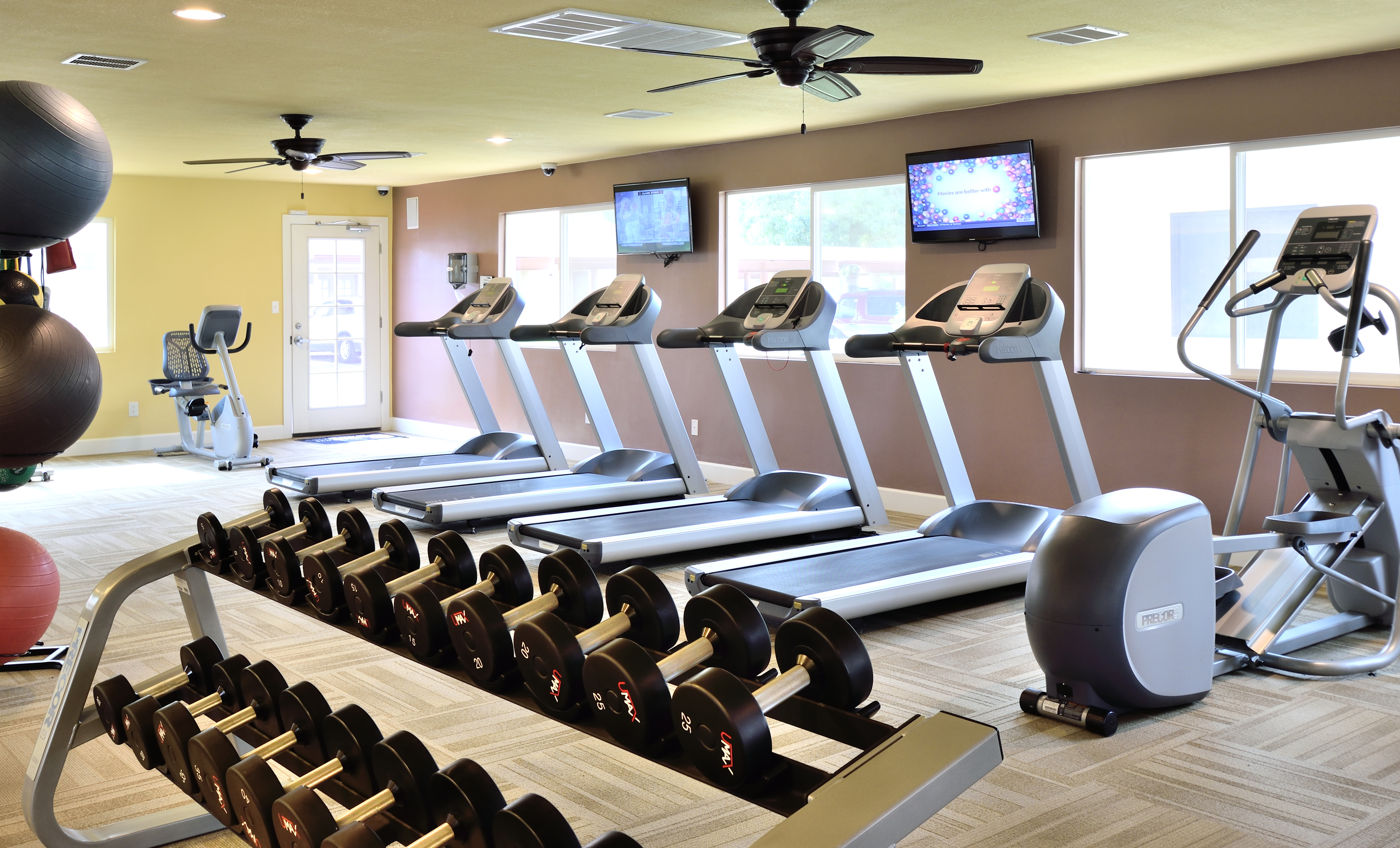 View of Fitness Center, Showing Cardio Equipment, Ceiling Fans, Flat Screen TV\'s and Weight Bench at Camelot Apartments