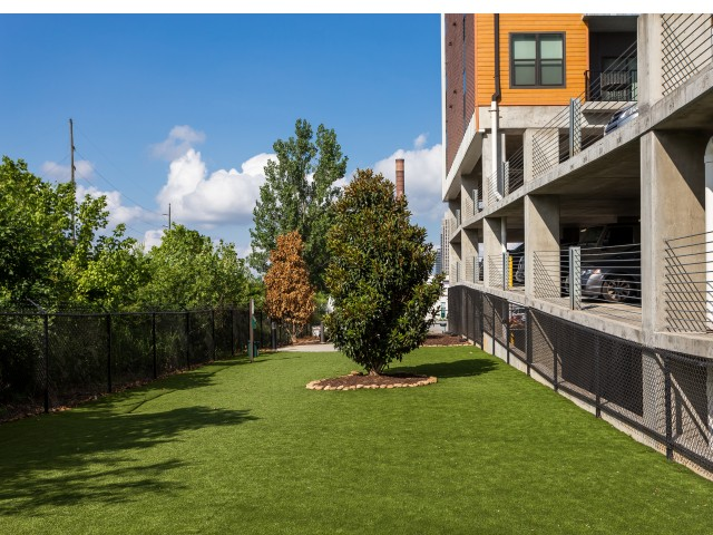 View of Dog Park, Showing West Midtown\'s Largest, Grass, Tree, and Fenced-In Area at Cottonwood Westside Apartments
