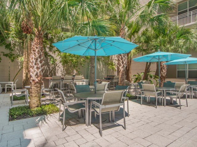 View of Pool Area, Showing BBQ Grills, Picnic Areas, Umbrellas, and Palm Trees at Cottonwood Bayview Apartments