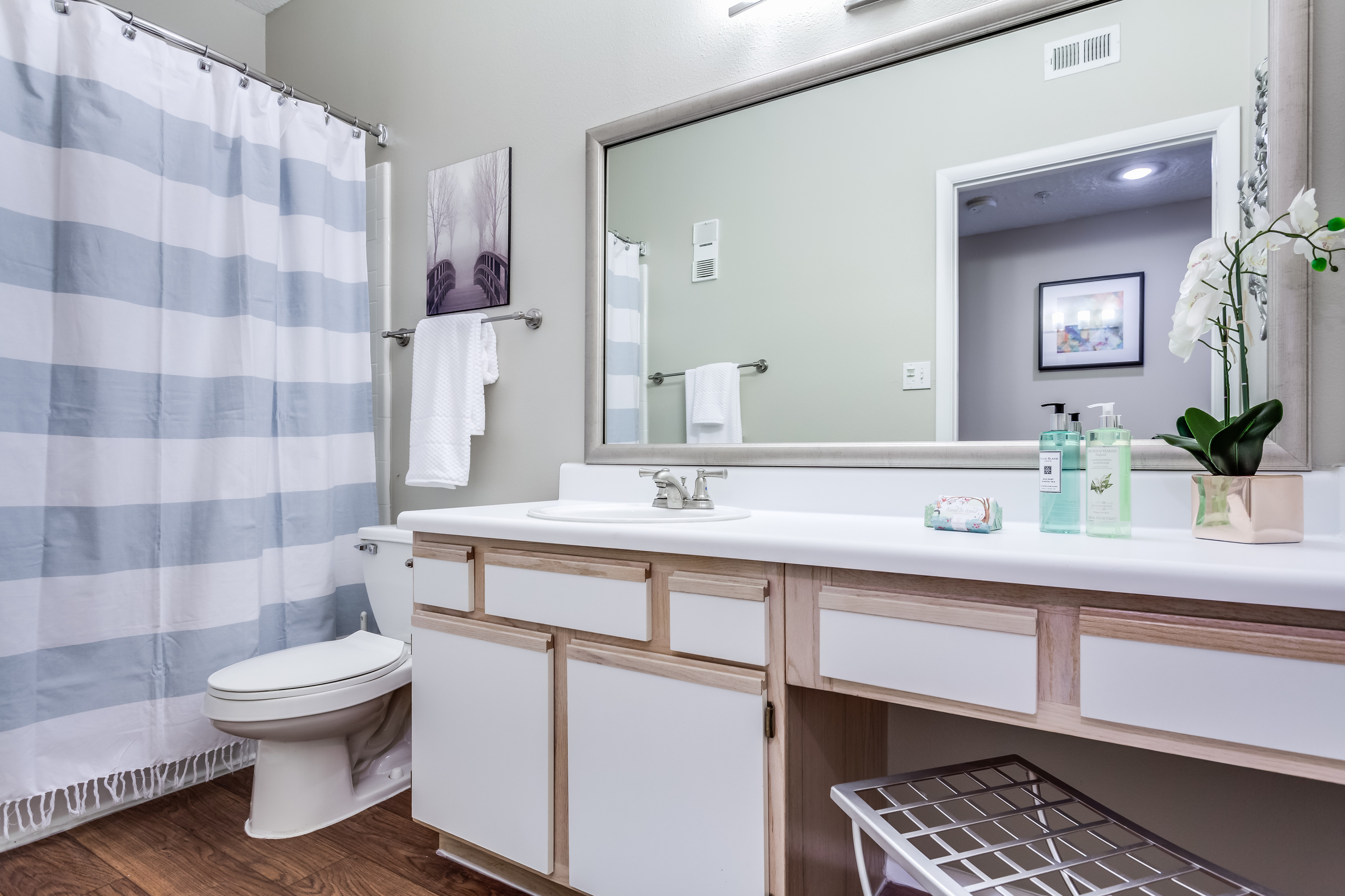 View of Classic Apartment Interior, Showing Bathroom with Plank Wood Flooring and Single Vanity at Waterford Creek Apartments