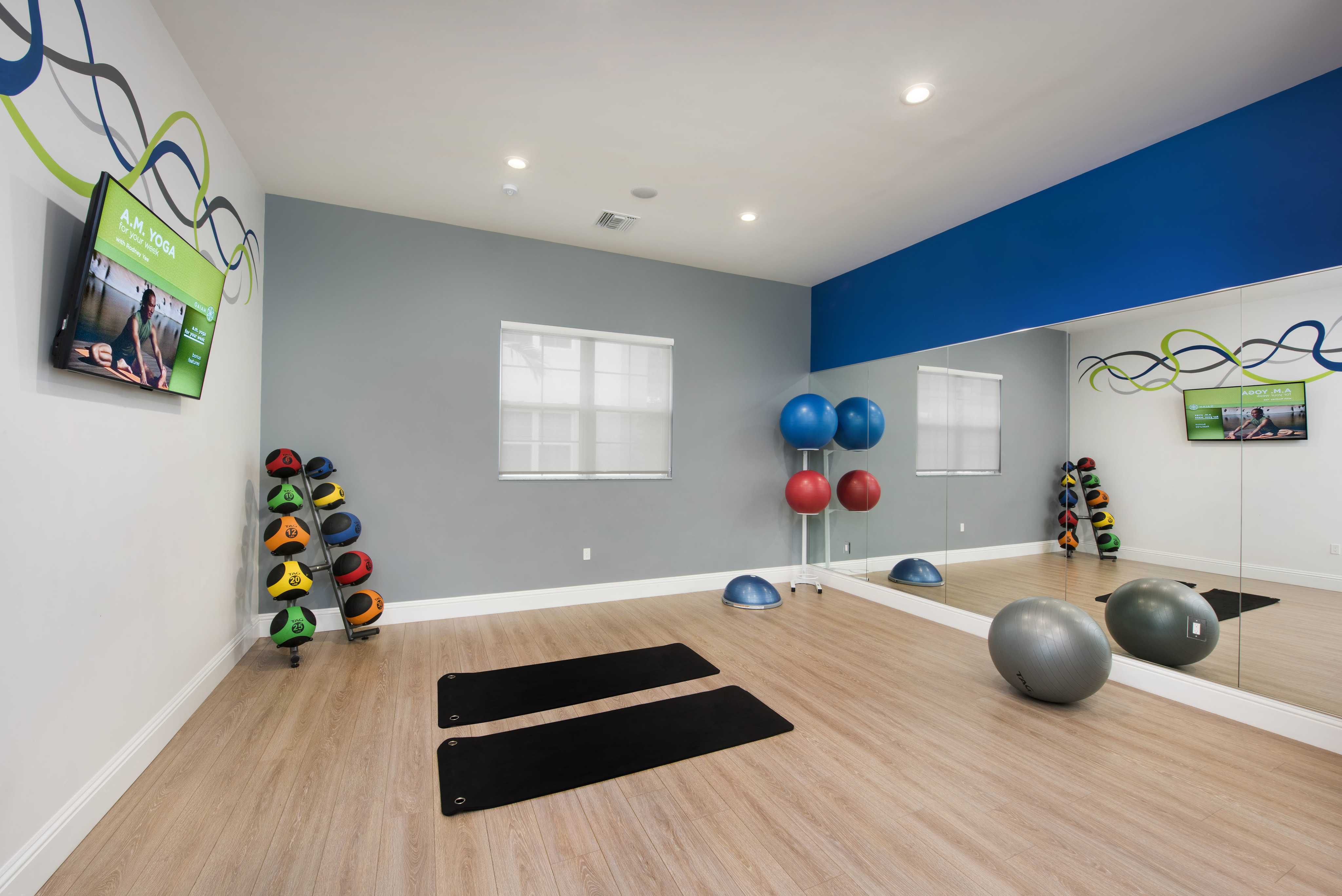 View of Yoga Studio, Showing Yoga Mats, Exercise Balls, TV, and Medicine Balls at Cottonwood West Palm Apartments