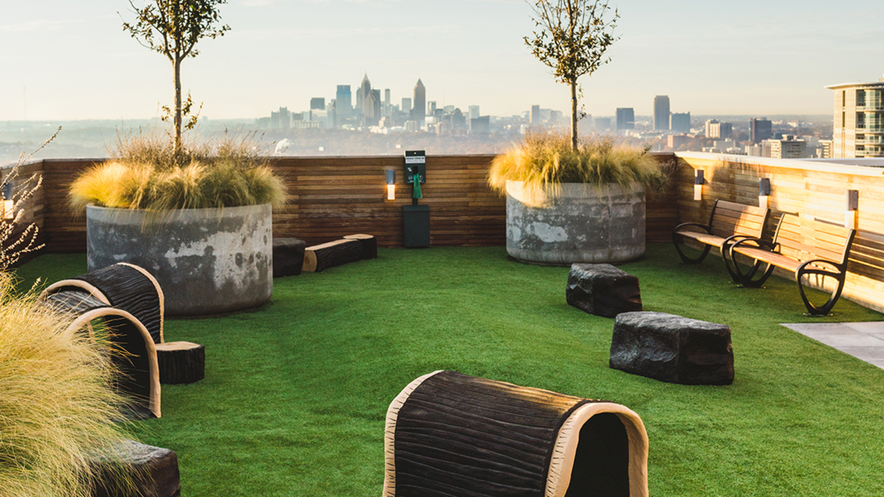 Pet-friendly community with expansive rooftop dog park and pet spa
