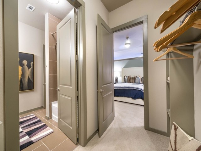 Huge Walk-In Closets in Master Bedrooms | Modera Flats