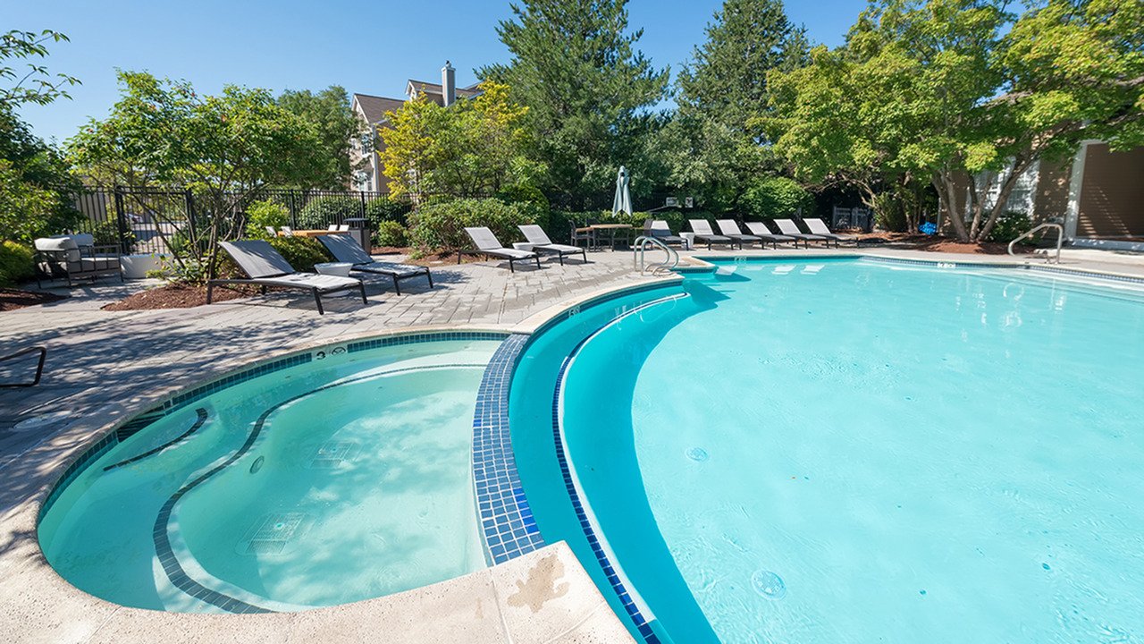 Hotel-Inspired Pool and Spa   Alister Quincy