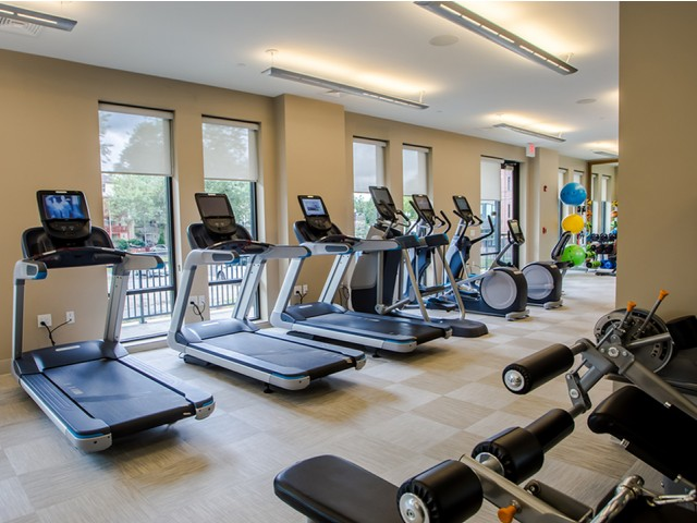 Image of Posh fitness studio for Modera 55