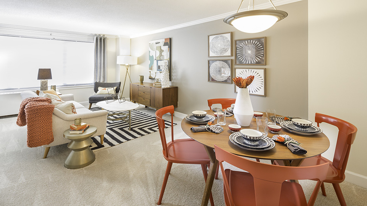 Bright and Open Layouts | Alister Arlington Ridge | Arlington, Virginia | Apartment Homes | Cozy Living Spaces